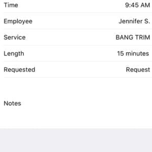 Salon Phone App - Appointment Booking