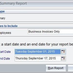 Business Summary Report