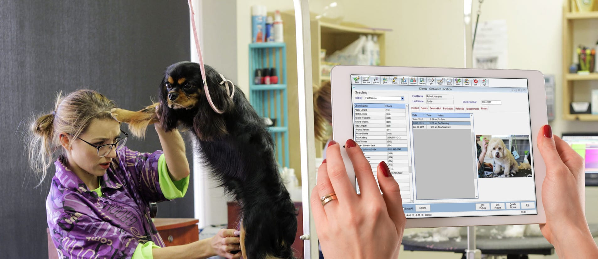 Insight Pet Dog Management Platform appointment booking client management